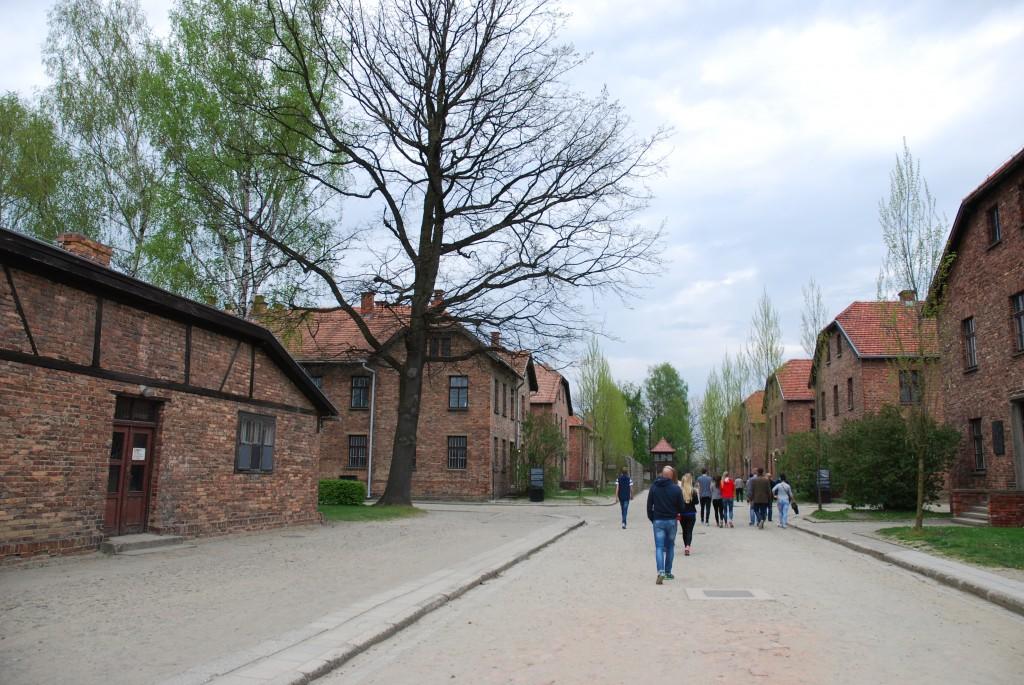 Krakow 2015 444
